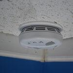 Bush Baby 4K WiFi Operative Smoke Detector