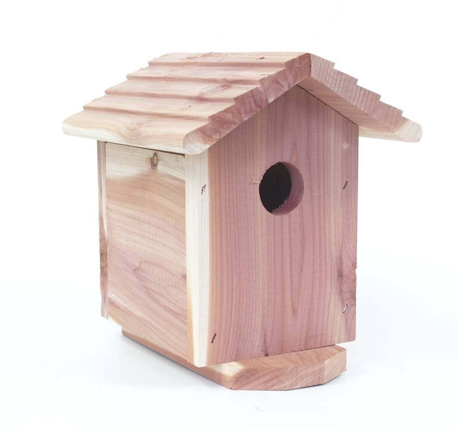 Outdoor SecureShot NightVision Cedar Bird House Camera/DVR w/1 Yr. Battery