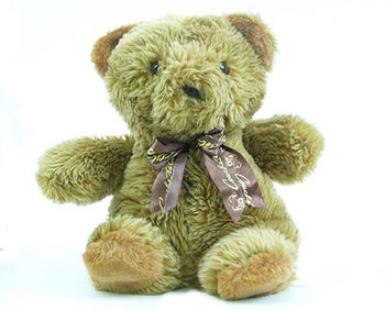 Battery Powered Teddy Bear Hidden Camera/DVR